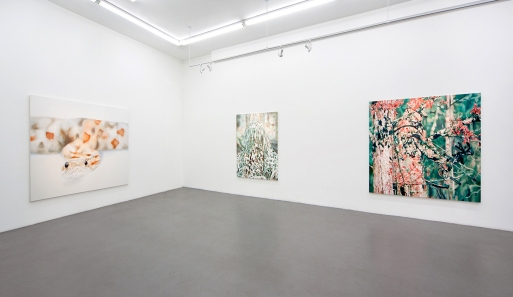 Installation View Charles Bank Gallery NY 2012