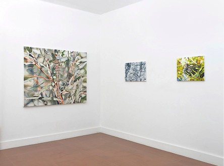 Installation view, Blackston Gallery,NYC, 2010